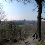 Durham from Pelaw Woods