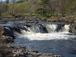 Near Low Force